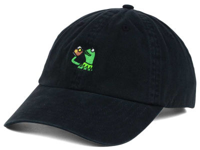 Frog Drinking Dad Hat