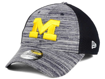Michigan Wolverines New Era NCAA Tonal Tint 39THIRTY Cap