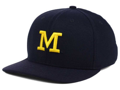 Michigan Wolverines Nike NCAA Dri-FIT Wool Cap
