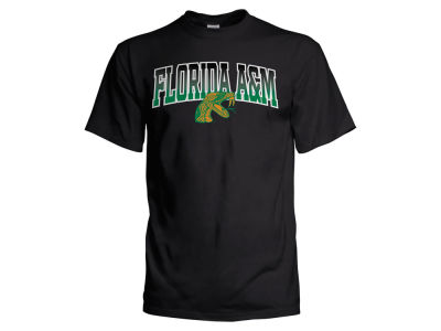Florida A&M Rattlers NCAA Men's Gradient Arch T-Shirt