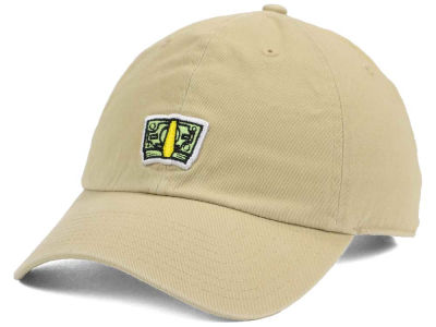 Happy Cappy Money Dad Hat