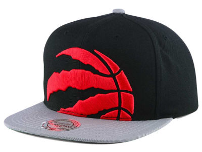 Toronto Raptors Mitchell and Ness NBA Cropped XL Logo Snapback Cap