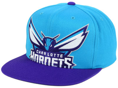 Charlotte Hornets Mitchell and Ness NBA Cropped XL Logo Snapback Cap