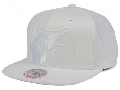 Memphis Grizzlies Mitchell and Ness NBA Cropped XL Logo Snapback Cap