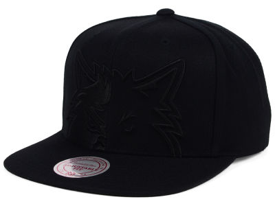 Minnesota Timberwolves Mitchell and Ness NBA Cropped XL Logo Snapback Cap