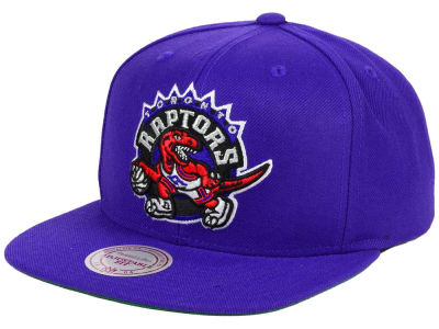 Toronto Raptors Mitchell and Ness NBA Hardwood Classic Basic Logo Snapback Cap