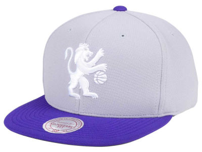 Sacramento Kings Mitchell & Ness NBA The Cloud Snapback Cap