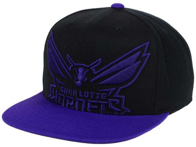 Charlotte Hornets Mitchell and Ness NBA Custom XL Cropped Snapback Cap