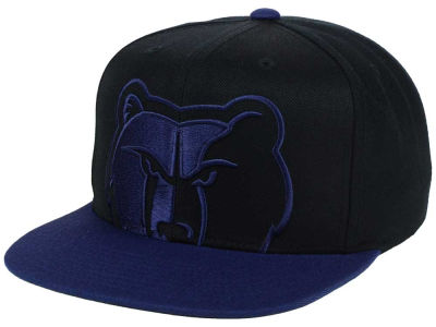 Memphis Grizzlies Mitchell and Ness NBA Custom XL Cropped Snapback Cap
