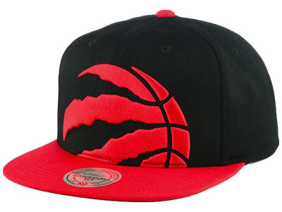 Toronto Raptors Mitchell and Ness NBA Custom XL Cropped Snapback Cap
