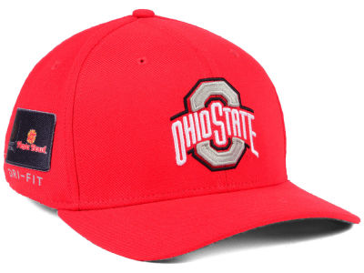 Ohio State Buckeyes Nike NCAA Elevated Bowl Swooshflex Cap