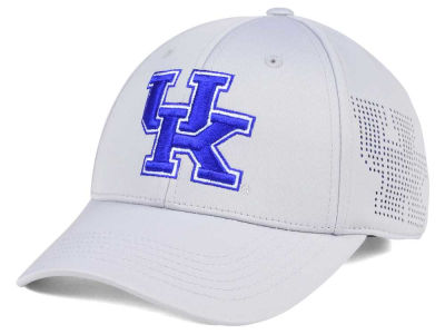 Kentucky Wildcats Top of the World NCAA Light Gray Rails Flex Cap
