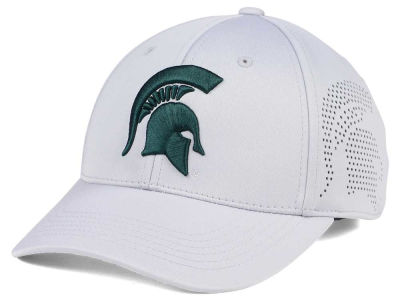 Michigan State Spartans Top of the World NCAA Light Gray Rails Flex Cap