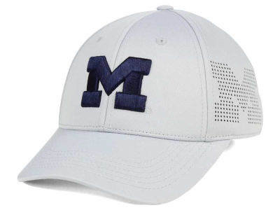Michigan Wolverines Top of the World NCAA Light Gray Rails Flex Cap