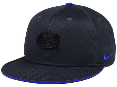 Florida Gators Nike NCAA Col Energy True Snapback Cap