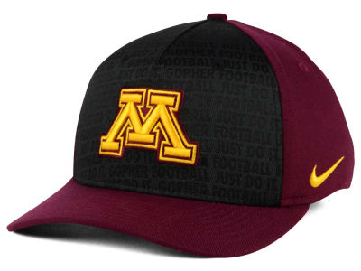 Minnesota Golden Gophers Nike NCAA Just Do It Swooshflex Cap