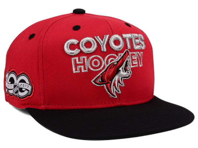 Arizona Coyotes adidas NHL 100th Celebration Snapback Cap