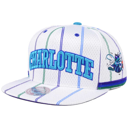 Charlotte Hornets Mitchell & Ness NBA Jersey Mesh Hook Snapback Cap