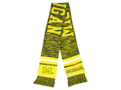 Michigan Wolverines Knit Color Blend Scarf