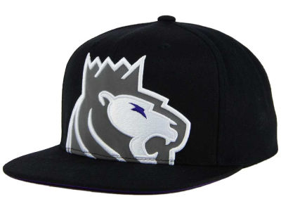 Sacramento Kings Mitchell & Ness XL Reflective Cropped Snapback Cap