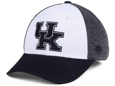 Kentucky Wildcats Top of the World NCAA Hustle Hard Flex Cap