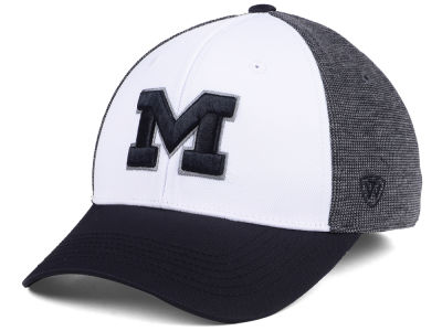 Michigan Wolverines Top of the World NCAA Hustle Hard Flex Cap