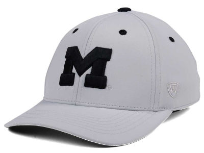 Michigan Wolverines Top of the World NCAA Grype Stretch Cap