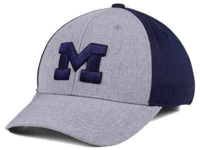 Michigan Wolverines Top of the World NCAA Faboo Stretch Cap