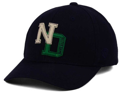 Notre Dame Fighting Irish Top of the World NCAA Venue Adjustable Cap