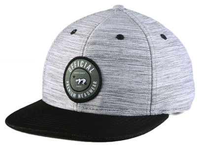 Official Hawk Patch Snapback Cap