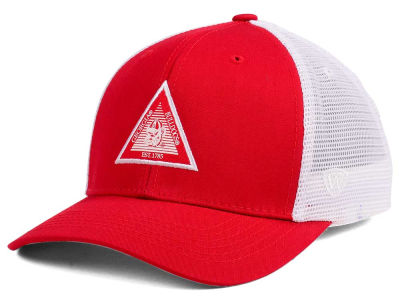 Georgia Bulldogs Top of the World NCAA Present Mesh Cap