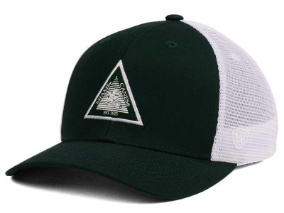Miami Hurricanes Top of the World NCAA Present Mesh Cap