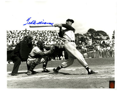 Boston Red Sox Ted Williams 16x20 Autographed Photo