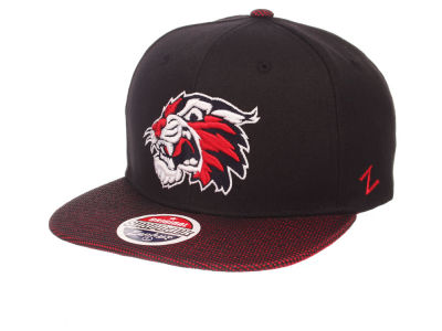 Arizona Wildcats Zephyr NCAA Spider Snapback Cap