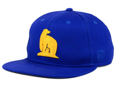 Alaska Fairbanks Nanooks Top of the World NCAA League Snapback Cap