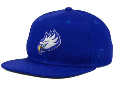 Florida Gulf Coast Eagles Top of the World NCAA League Snapback Cap
