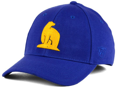 Alaska Fairbanks Nanooks Top of the World NCAA Class Stretch Cap