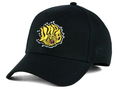Arkansas Pine Bluff Golden Lions Top of the World NCAA Class Stretch Cap