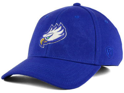 Florida Gulf Coast Eagles Top of the World NCAA Class Stretch Cap
