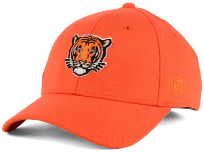 Princeton Tigers Top of the World NCAA Class Stretch Cap