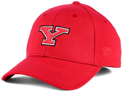 Youngstown State Penguins Top of the World NCAA Class Stretch Cap