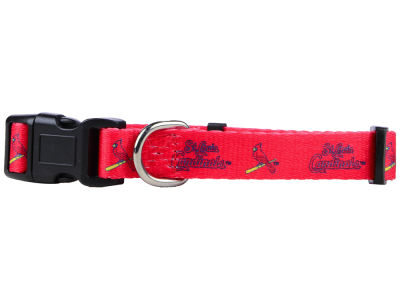 St. Louis Cardinals Rico Industries Small Dog Collar
