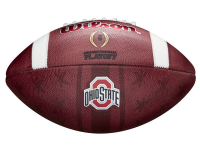 Ohio State Buckeyes Wilson Ghost Football