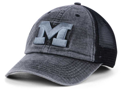 Michigan Wolverines Top of the World NCAA Ploom Adjustable Cap