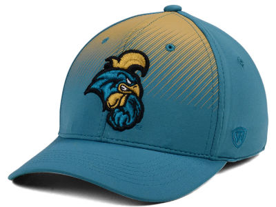 Coastal Carolina Chanticleers Top of the World NCAA Fallin Stretch Cap