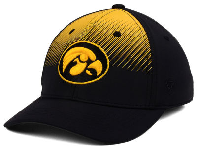 Iowa Hawkeyes Top of the World NCAA Fallin Stretch Cap