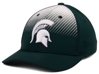 Michigan State Spartans Top of the World NCAA Fallin Stretch Cap