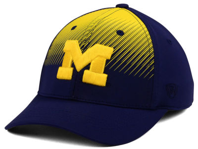 Michigan Wolverines Top of the World NCAA Fallin Stretch Cap
