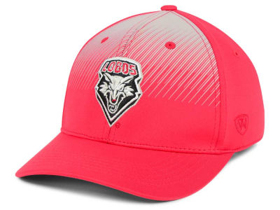 New Mexico Lobos Top of the World NCAA Fallin Stretch Cap