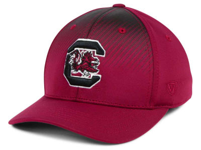 South Carolina Gamecocks Top of the World NCAA Fallin Stretch Cap